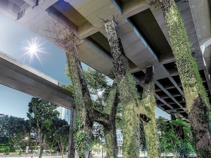 Stadtbilder Singapur